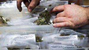 Cannabis Trade Organizations Sue Los Angeles Over Delivery Licenses